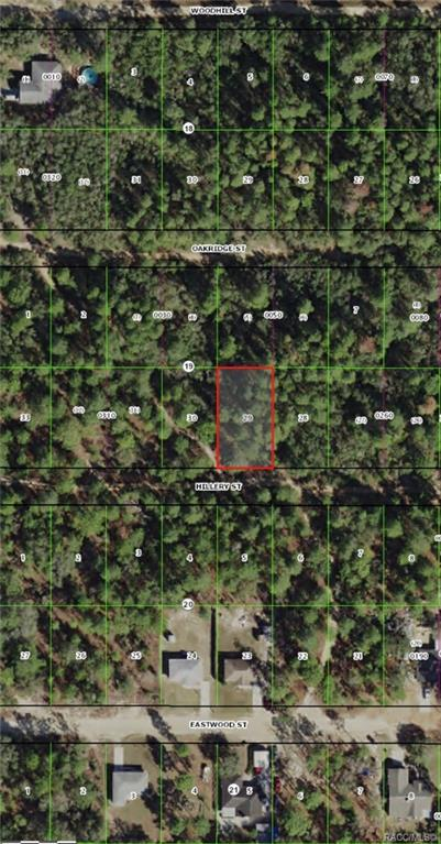 2902 Hillery Street, Inverness, FL 34452 (MLS #781108) :: Plantation Realty Inc.