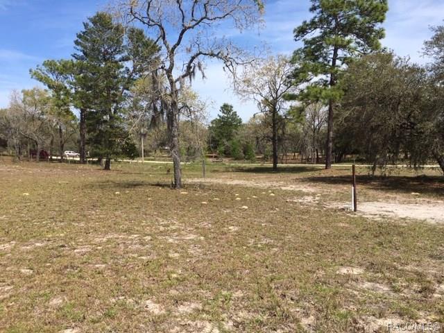 6538 N Ewok Point, Dunnellon, FL 34433 (MLS #781405) :: Plantation Realty Inc.