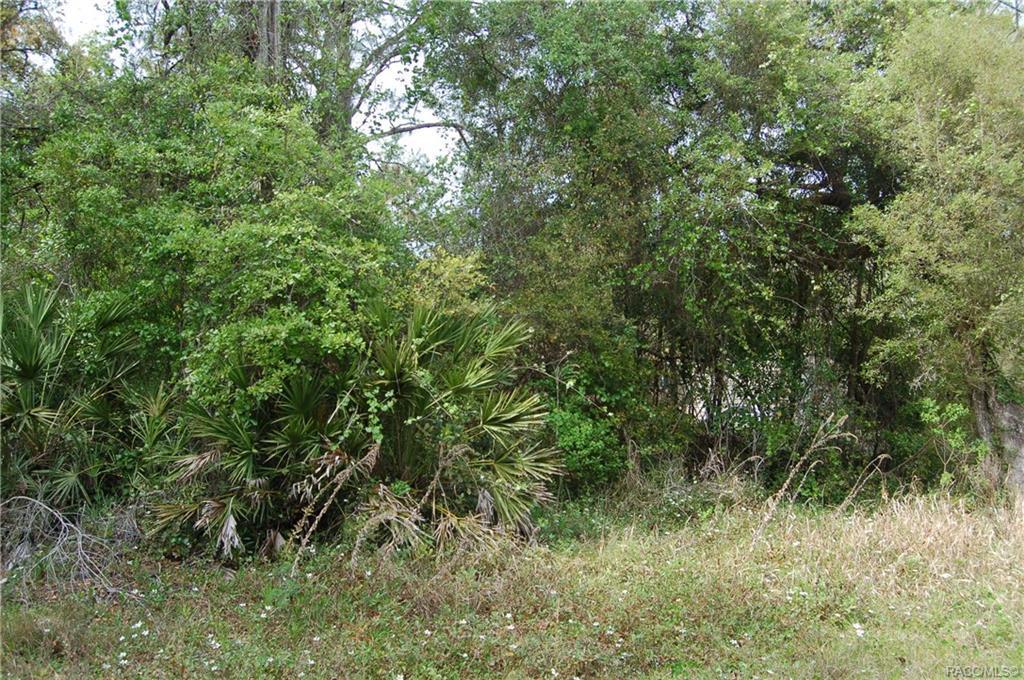 7832 Brush Terrace - Photo 1