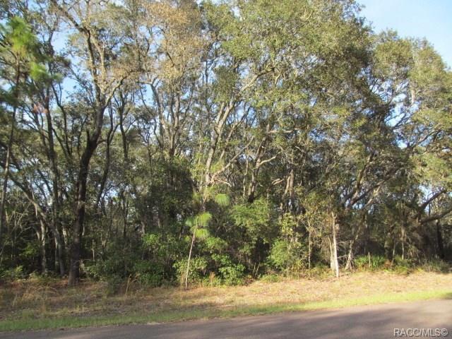 8983 Farrington, Citrus Springs, FL 34433 (MLS #781492) :: Plantation Realty Inc.