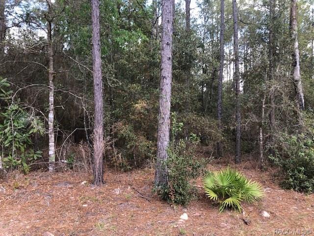 8325 N Carousel Terrace, Crystal River, FL 34428 (MLS #781533) :: Plantation Realty Inc.