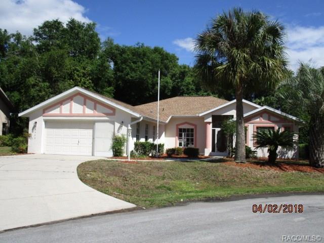 2983 N Stratham Point, Hernando, FL 34442 (MLS #782030) :: Pristine Properties