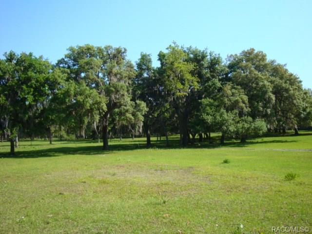11118 E Wise Lane, Floral City, FL 34436 (MLS #782064) :: Plantation Realty Inc.
