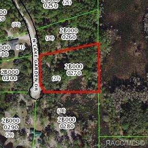 12081 N Lake Garden Drive, Dunnellon, FL 34434 (MLS #782110) :: Plantation Realty Inc.