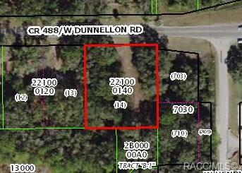 2012 W Dunnellon Road, Dunnellon, FL 34433 (MLS #782115) :: Plantation Realty Inc.