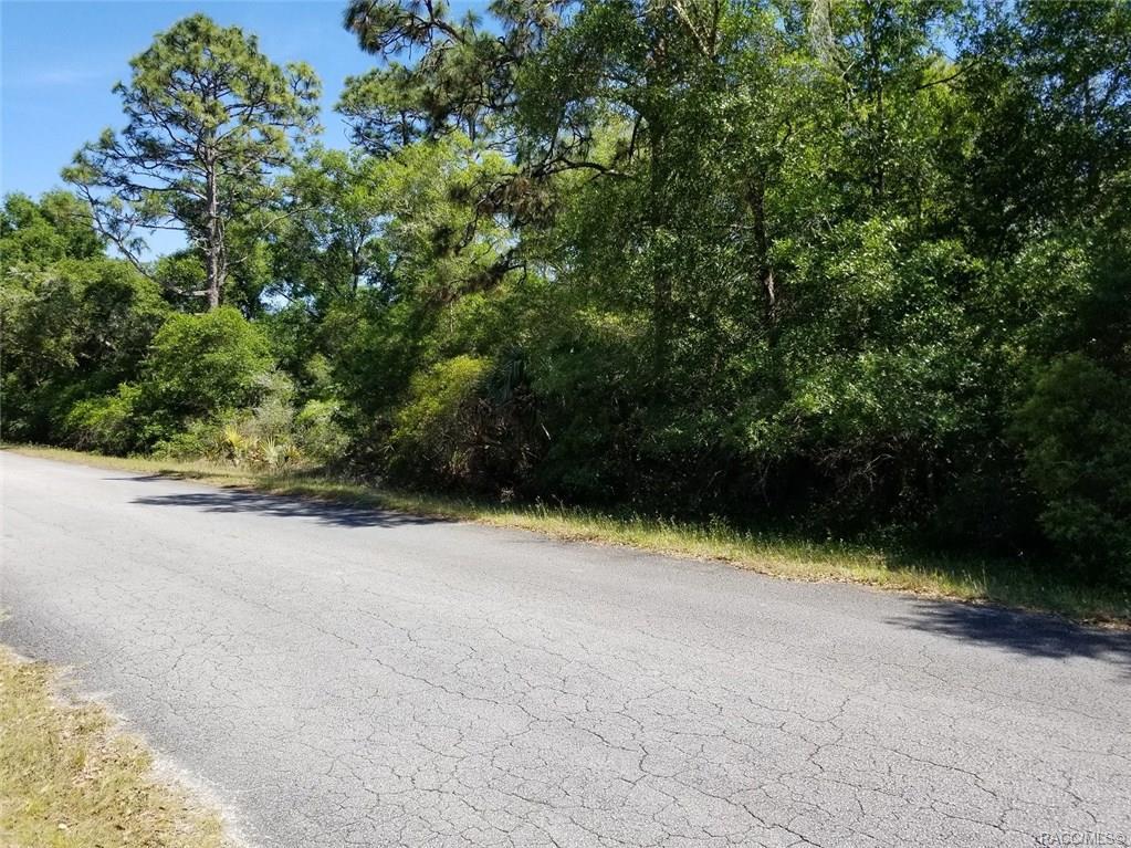 12752 Cypress Vine Lane - Photo 1