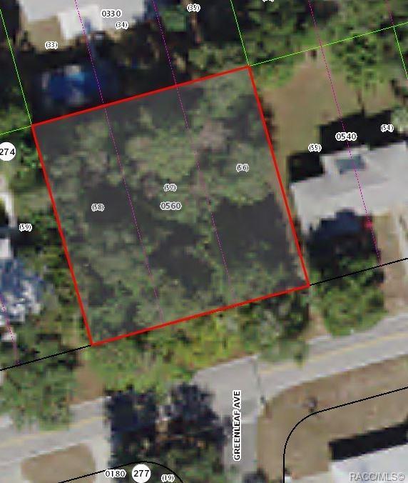 1410 Eden Drive, Inverness, FL 34450 (MLS #782656) :: Pristine Properties