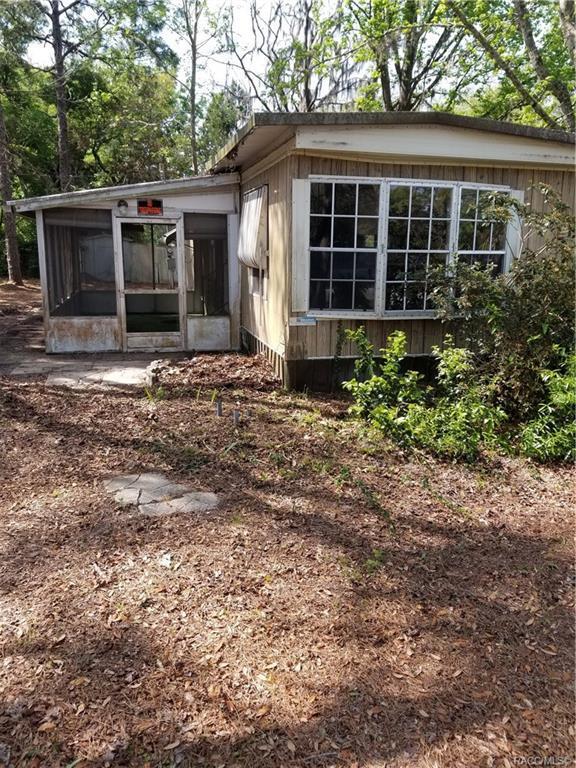 6430 W Grant Street, Homosassa, FL 34448 (MLS #783033) :: Pristine Properties