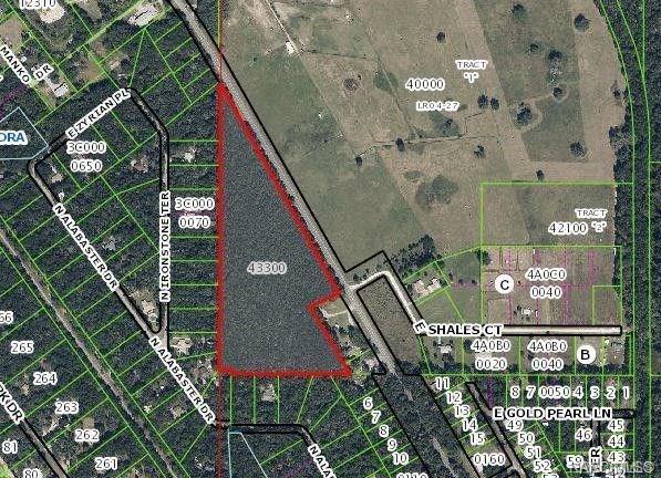 5350 N Florida Avenue, Hernando, FL 34442 (MLS #783109) :: Plantation Realty Inc.