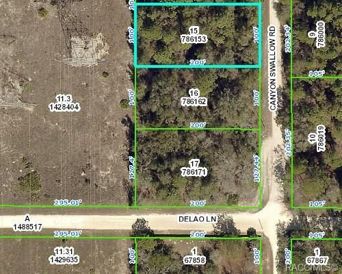 0 Canyon Swallow Road, Brooksville, FL 34614 (MLS #783417) :: Pristine Properties