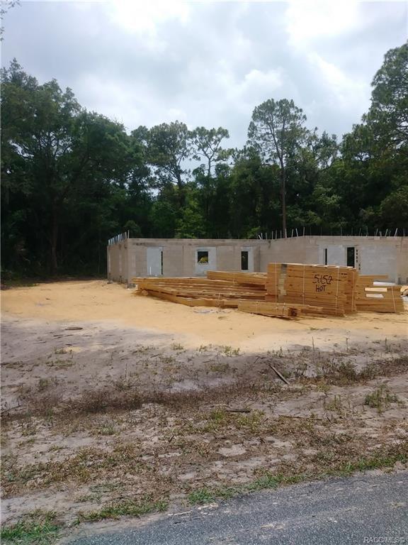 9342 N Cacalia Drive W #2, Crystal River, FL 34429 (MLS #783609) :: Pristine Properties