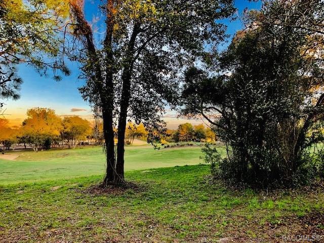 2635 N Prestwick Way, Lecanto, FL 34461 (MLS #783680) :: Plantation Realty Inc.