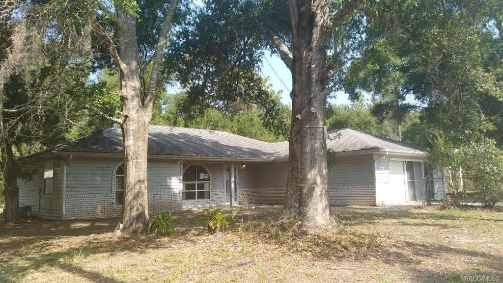 1141 Orchid Street - Photo 1