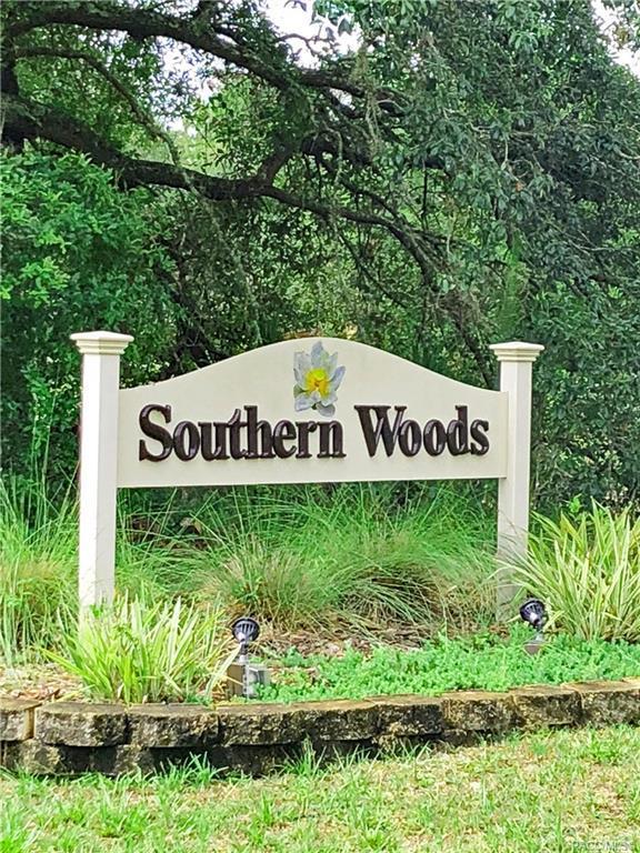 54 Highwood Path, Homosassa, FL 34446 (MLS #783695) :: Plantation Realty Inc.