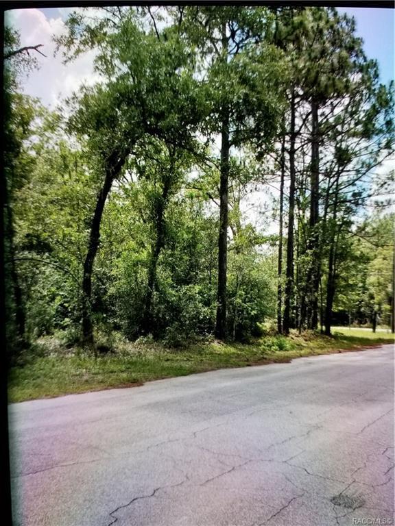 7548 W Dunnellon Road, Dunnellon, FL 34433 (MLS #783902) :: Pristine Properties