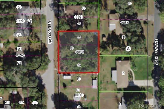 615 Baylor Terrace, Inverness, FL 34450 (MLS #783980) :: Plantation Realty Inc.
