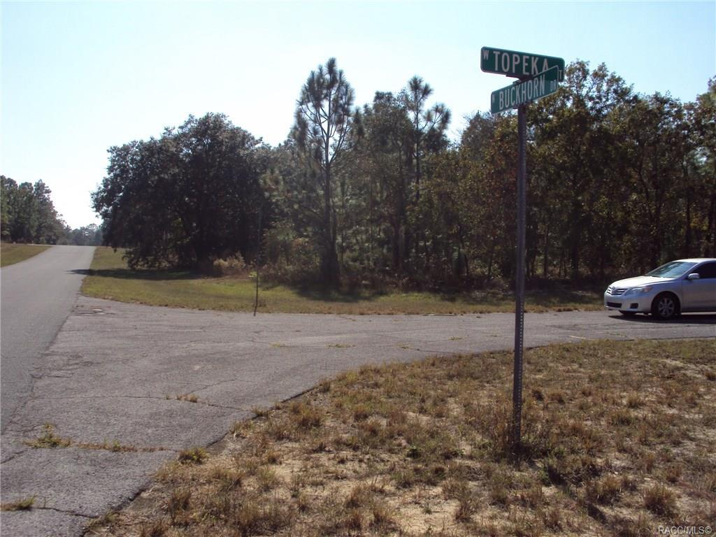 3300 Buckhorn Drive - Photo 1