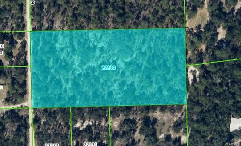 5099 N Smokey Mountain Point, Crystal River, FL 34428 (MLS #784316) ::  Plantation Realty Inc