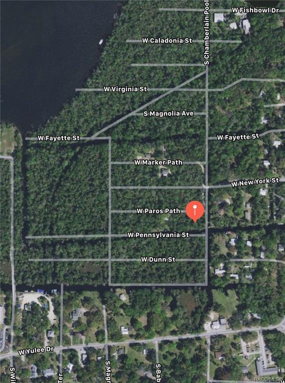 10636 W Paros Path, Homosassa, FL 34448 (MLS #784872) :: Plantation Realty Inc.