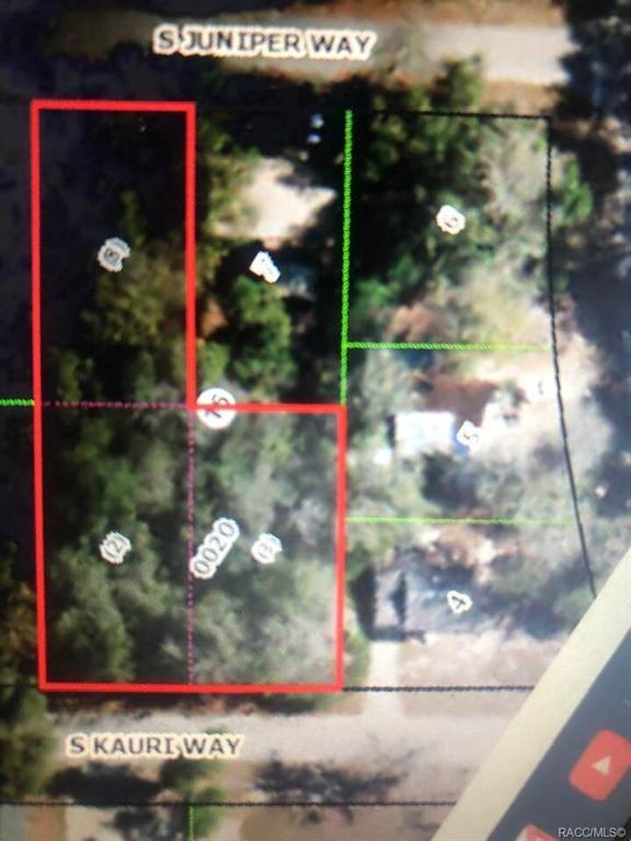 733 S Kauri, Inverness, FL 34450 (MLS #785100) :: Plantation Realty Inc.