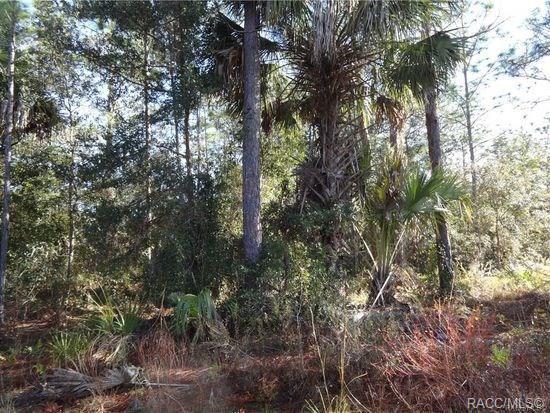 1377 S Candlenut Avenue, Homosassa, FL 34448 (MLS #785236) :: Plantation Realty Inc.
