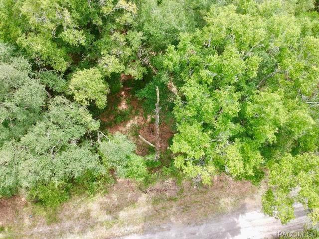 Dunnellon, FL 34432 :: Pristine Properties