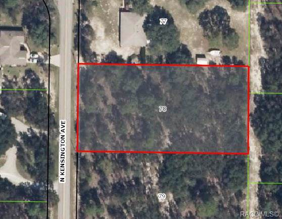 701 N Kensington Avenue, Lecanto, FL 34461 (MLS #786488) :: Plantation Realty Inc.