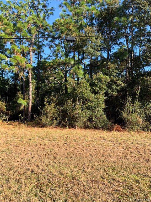 4573 W Pine Ridge Boulevard, Beverly Hills, FL 34465 (MLS #786675) :: Plantation Realty Inc.