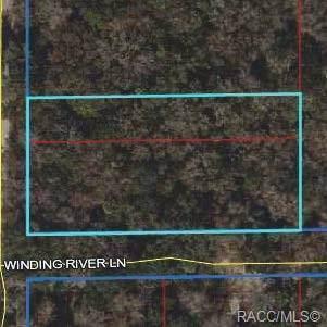 0 Winding River Lane, Inglis, FL 34449 (MLS #786690) :: Pristine Properties
