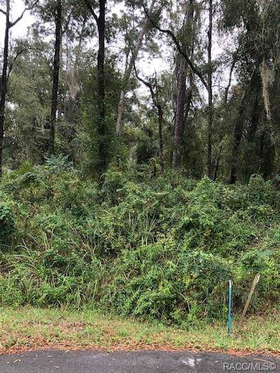 00 SW 98th Loop, Dunnellon, FL 34432 (MLS #786784) :: Plantation Realty Inc.