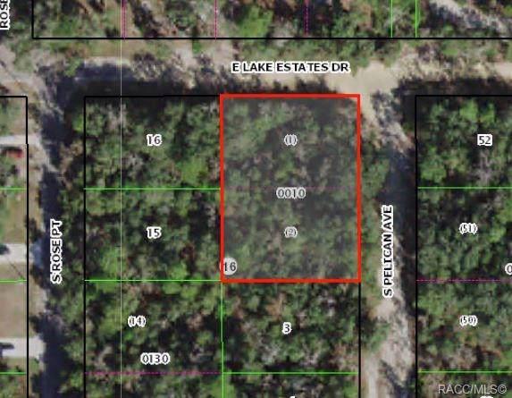 3442 S Pelican Avenue, Inverness, FL 34450 (MLS #786861) :: Plantation Realty Inc.