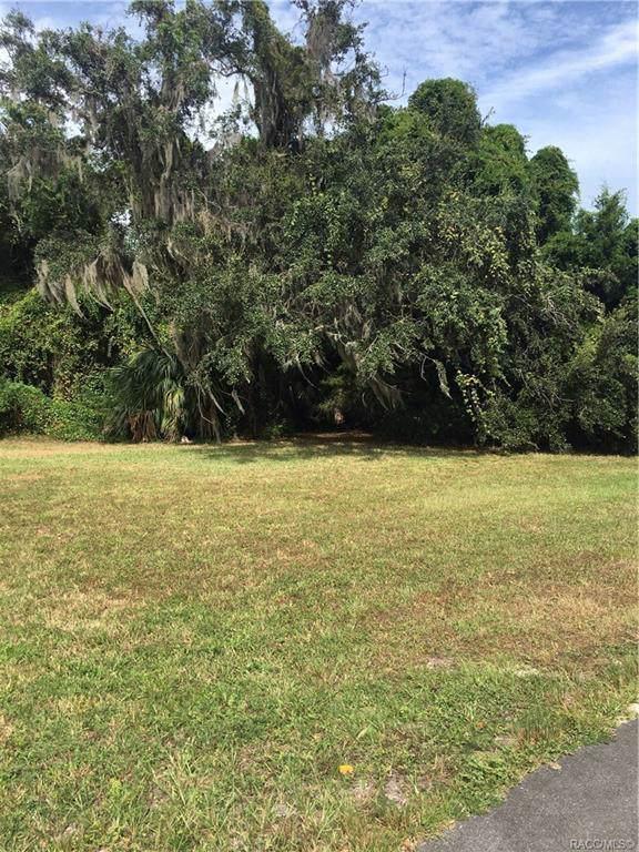 4724 S Sawmill Way, Homosassa, FL 34448 (MLS #787048) :: Plantation Realty Inc.
