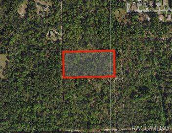 151 N Quiet Pines Point, Crystal River, FL 34429 (MLS #787133) :: Plantation Realty Inc.