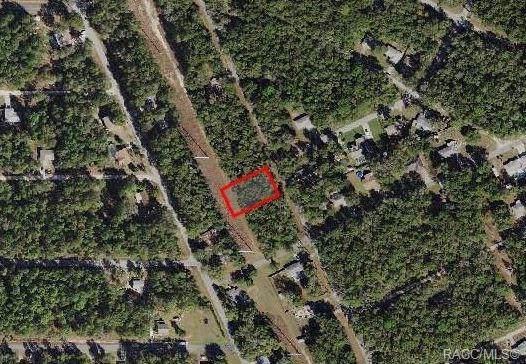 254 N Savary Avenue, Inverness, FL 34453 (MLS #787306) :: Plantation Realty Inc.