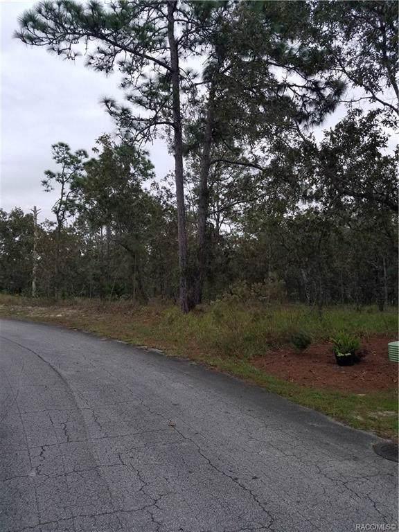 17 Maidenbush Court E, Homosassa, FL 34446 (MLS #787434) :: Plantation Realty Inc.