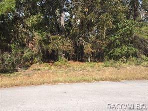 10 Gourds Court W, Homosassa, FL 34446 (MLS #787524) :: Plantation Realty Inc.