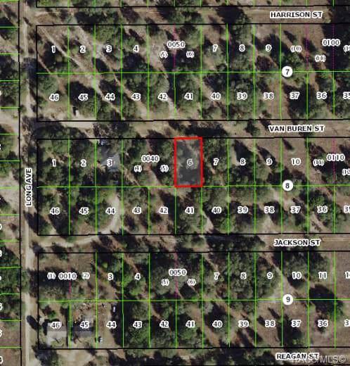 2511 Van Buren Street, Inverness, FL 34453 (MLS #787546) :: Pristine Properties