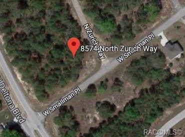 8574 N Zurich Way, Citrus Springs, FL 34434 (MLS #787754) :: Plantation Realty Inc.