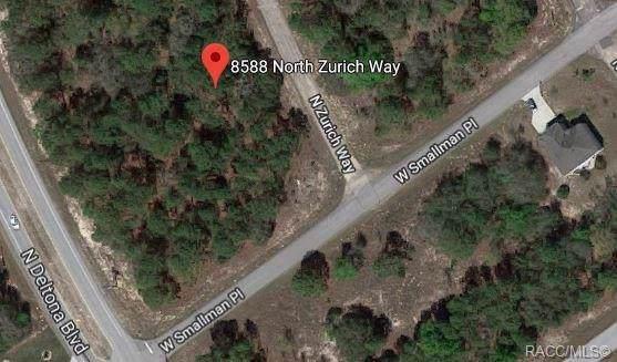 8588 N Zurich Way, Citrus Springs, FL 34434 (MLS #787755) :: Plantation Realty Inc.