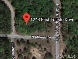 1243 E Toledo Drive, Citrus Springs, FL 34434 (MLS #787756) :: Plantation Realty Inc.