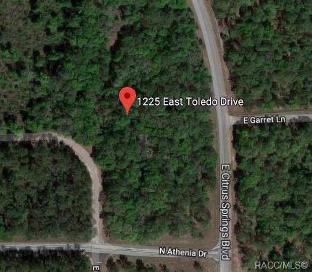 1225 E Toledo Drive, Citrus Springs, FL 34434 (MLS #787757) :: Plantation Realty Inc.