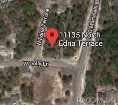 11135 N Edna Terrace, Citrus Springs, FL 34433 (MLS #787758) :: Plantation Realty Inc.