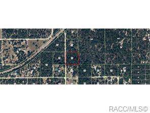 Dunnellon, FL 34433 :: Plantation Realty Inc.