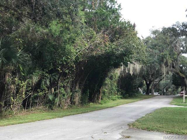 251 NE 9th Street, Crystal River, FL 34428 (MLS #788177) :: Plantation Realty Inc.