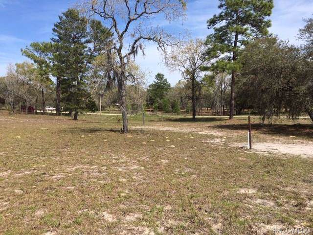 6538 N Ewok Point, Dunnellon, FL 34433 (MLS #788215) :: Plantation Realty Inc.