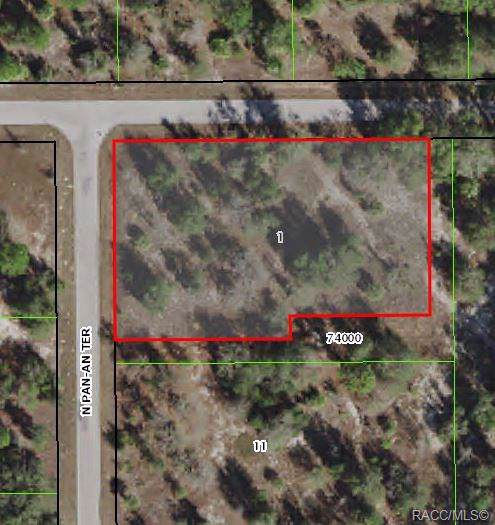 11919 N Pan An Terrace, Dunnellon, FL 34434 (MLS #788345) :: Pristine Properties