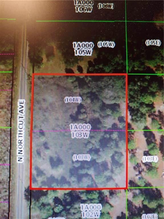 9601 N Northcut Avenue, Crystal River, FL 34428 (MLS #788439) :: Plantation Realty Inc.