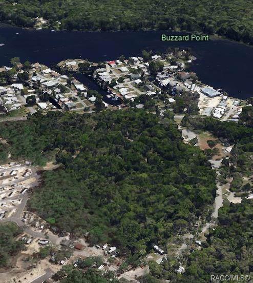 10331 W Halls River Road, Homosassa, FL 34448 (MLS #788514) :: Plantation Realty Inc.