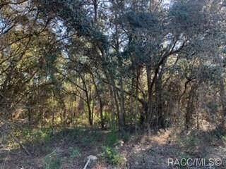 9220 N Unicorn Point, Dunnellon, FL 34433 (MLS #788948) :: Plantation Realty Inc.