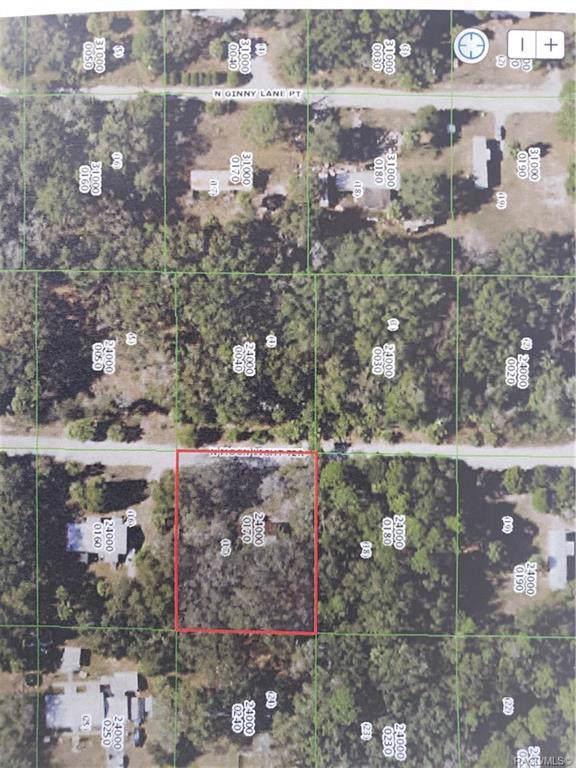 11411 N Moonlight Terrace, Inglis, FL 34449 (MLS #789076) :: Plantation Realty Inc.